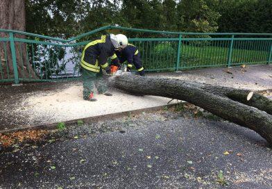 Sturmtief: Alle Feuerwehren der Gemeinde Großefehn alarmiert.